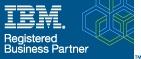 IBM Registered Business Partner logo